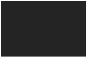 Dan's Food Market Logo